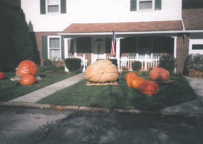 Big pumpkins in front of house