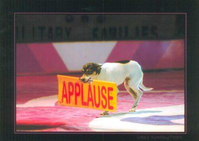Johnny-Peers-Applause